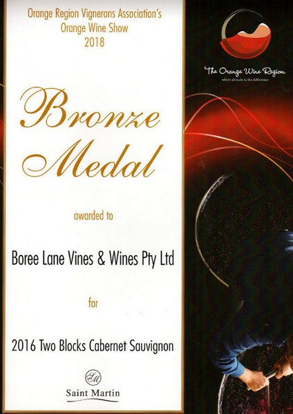 Bronze Medal 2016 2 Blocks