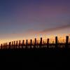 Colours at dusk