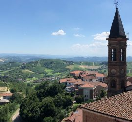 Looking out over the vineyards from the hill town of Cisterna